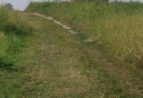 Грунтова дорога до Мурованого стовпа